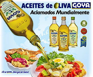 Goya aceite oliva nuevo  vid sq3