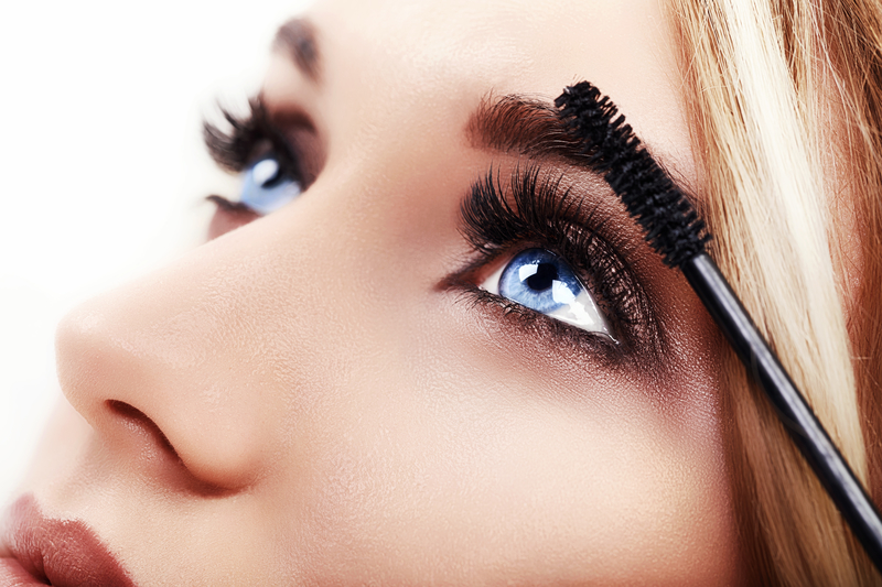 dreamstime - brush - makeup