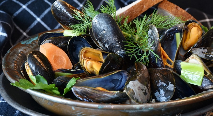 Pixabay - Mussels